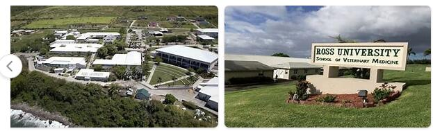 Saint Kitts and Nevis Schooling