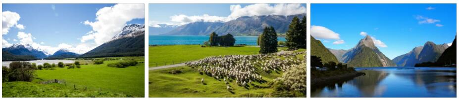 Traveling in New Zealand Part 1